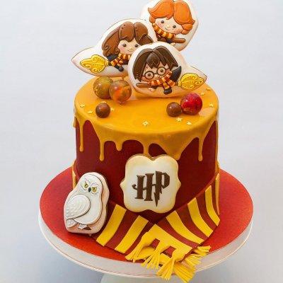 Торт Гарри Поттер №6