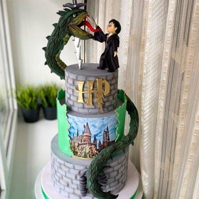 Торт Гарри Поттер №21