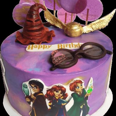 Торт Гарри Поттер №29
