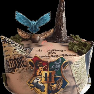 Торт Гарри Поттер №25