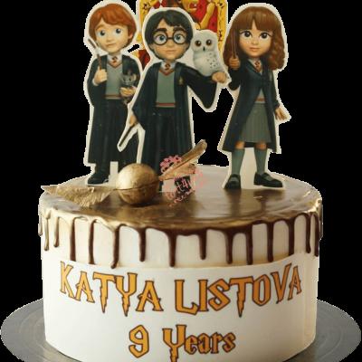 Торт Гарри Поттер №28