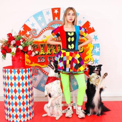 Собачки для детского праздника